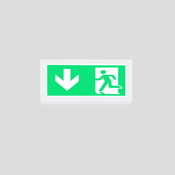 LEDEX Surface Mounted Grey Exit Sign